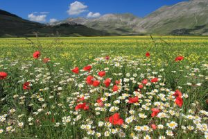 Meta Slider - HTML Overlay - parco nazionale monti sibillini